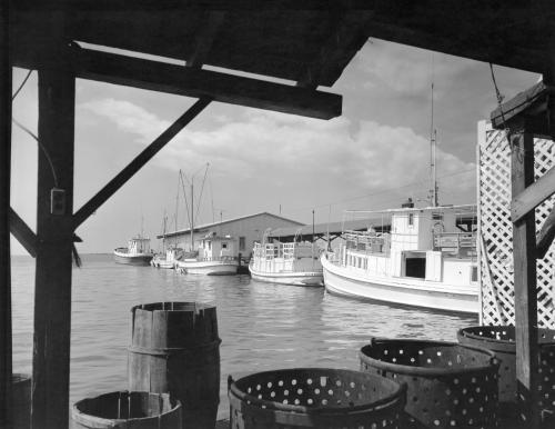 Oyster Buyboats, mailboats at Pierside.jpg