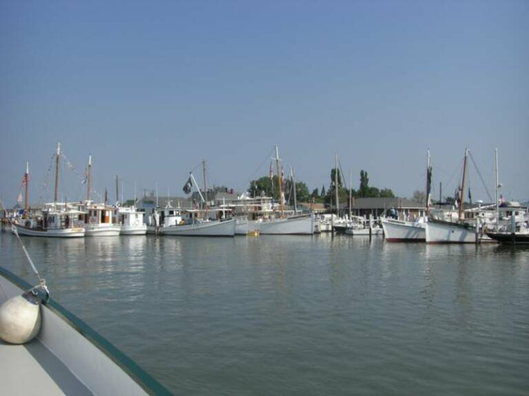 (CBBA) Chesapeake Bay Buyboat Association.jpg