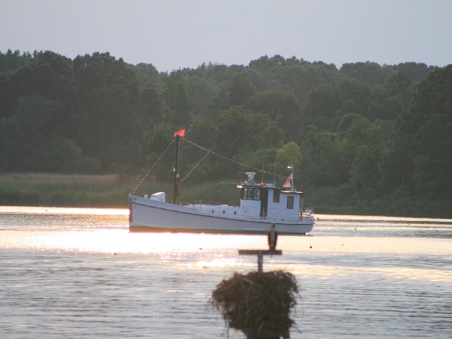 oyster boat Photo by Stacie Stinnette.jpg