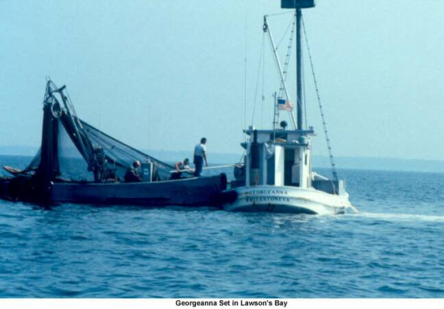 Oyster Buyboat Georgenna.jpg