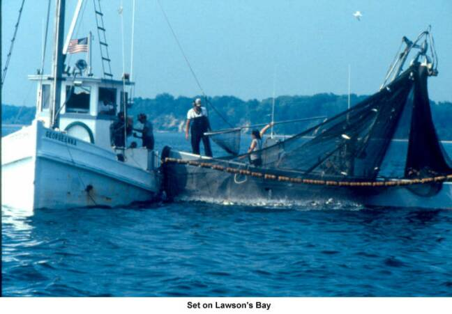 Oyster Buyboat Georgeanna Working.jpg